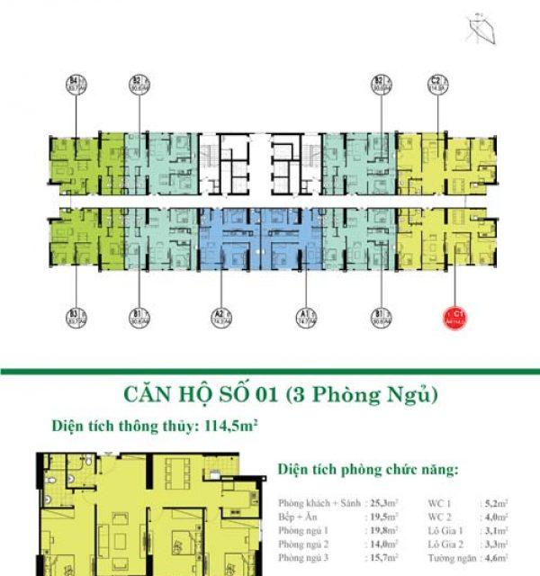 Tang-27-28-01