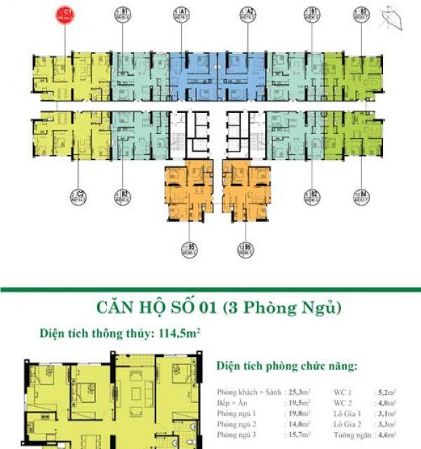 Tang-3-32-01