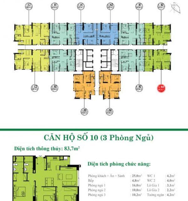Tang-3-32-10