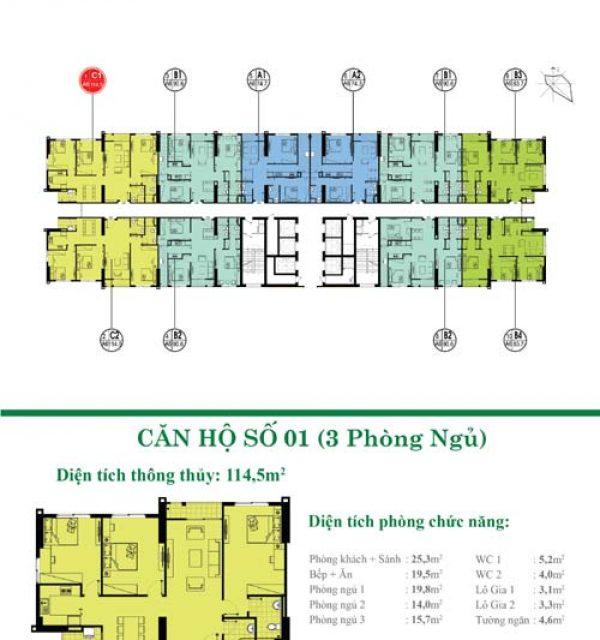 Tang-34-35-01