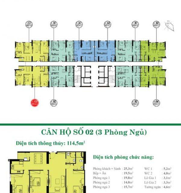 Tang-34-35-02