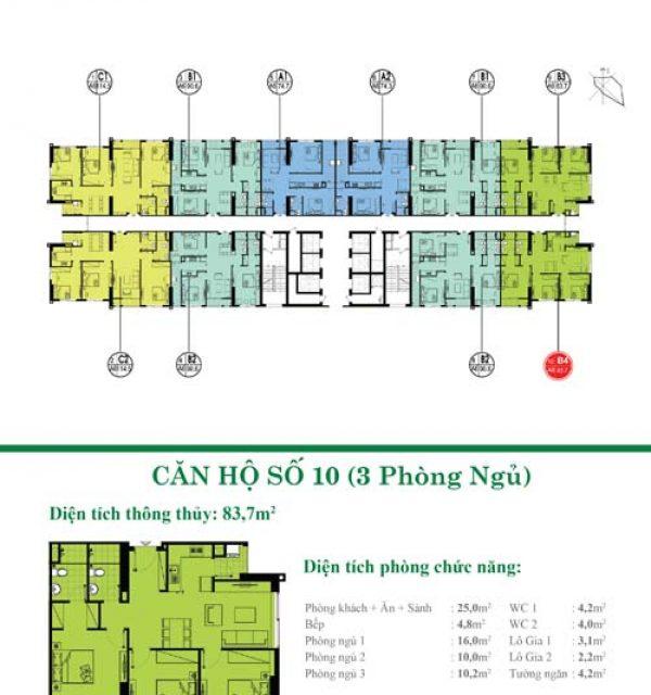 Tang-34-35-10